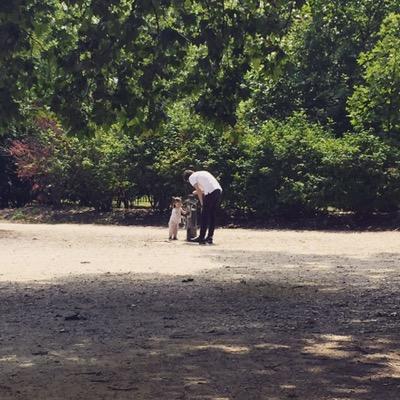 Au parc